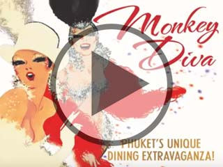 Monkey Diva Welcome Video